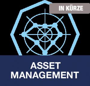 Positionsbestimmung Ihrer Asset Management-Organisation, dankl+partner consulting, MCP Deutschland